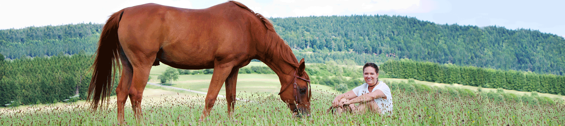 Kategorie Headerbild Pferd und Reiter